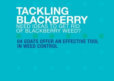 GOATS OFFER AN EFFECTIVE TOOL IN BLACKBERRY CONTROL