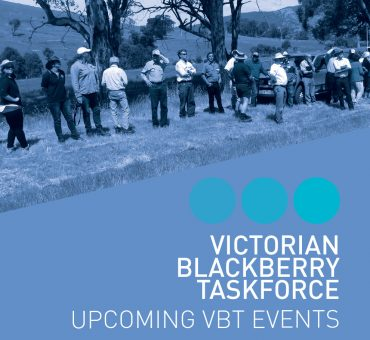 VBT UPCOMING EVENTS